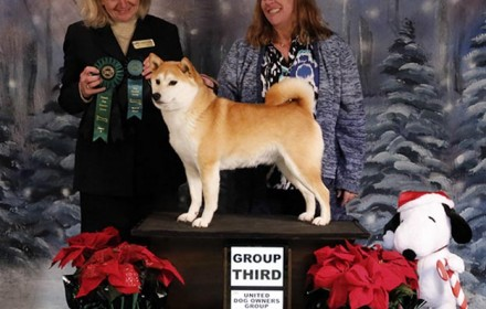 Yuri wins Best of Breed