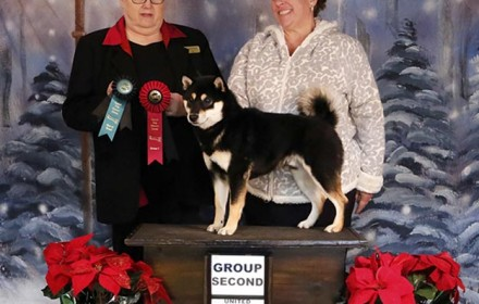 Akuto wins Best of Breed