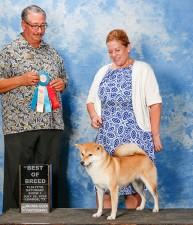 Beni wins Best of Breed