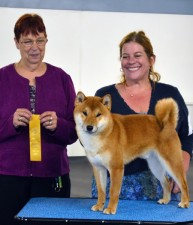 Yoshi wins Best of Breed