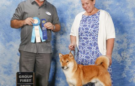 Yoshi wins Best of Breed and Group 1